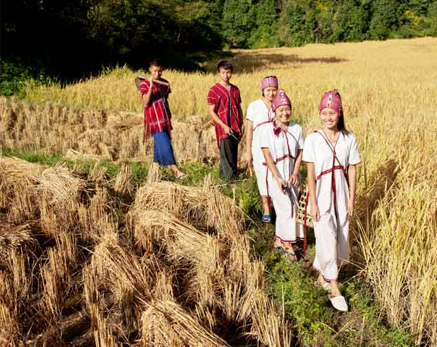 Karen Hill tribe in paddy field